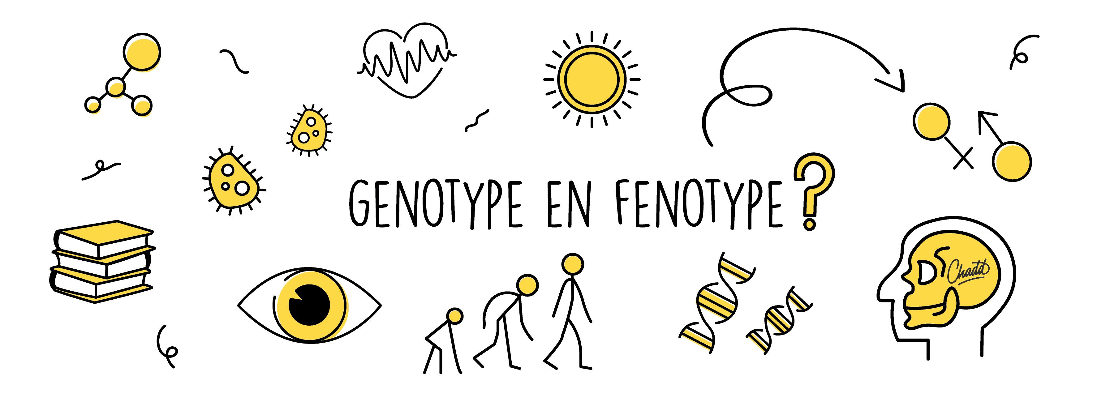 Genotype en fenotype