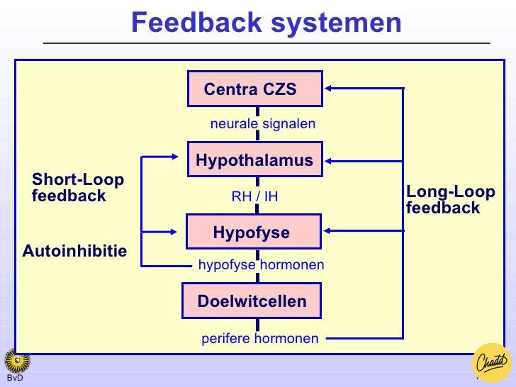 Feedback-systeem